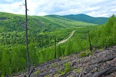 Vägen passerar mellan de gröna kullarna royaltyfri foto