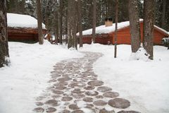 Vägen som göras av trästrålar räknad snow fotografering för bildbyråer