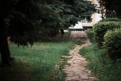 Vägen som leder runt om staden, parkerar Arkivfoto
