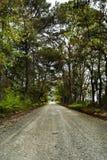 Vägen som resas mindre Royaltyfria Bilder