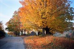 Vägen som tas mindre Royaltyfria Foton