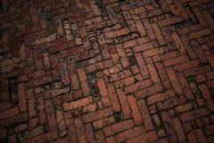 Vägen stenläggas med röda tegelstenar Bakgrund textur av vägtegelplattorna Arkivfoton