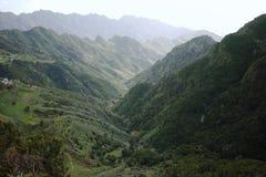 Vägen TF-12 i lantliga Anaga parkerar - maxima med den forntida skogen på Te Royaltyfria Bilder