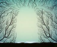 Vägen till den djupa felika frostiga vinterskogen, skuggar, förgrena sig konturn, blå fe för blått Arkivfoton