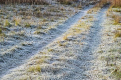 Vägen till det frostade gräset Frost på vägen Arkivbilder