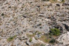 Vägen till en övergiven slott överst av ett berg i Spanien Arkivbild