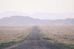 Vägen till kanjonerna kanjon royaltyfri fotografi