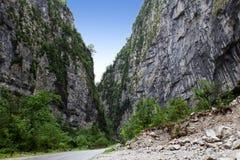 Vägen till och med bergen av Abkhazia Royaltyfria Foton