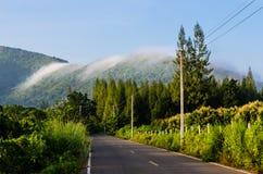 Vägen till och med dimma räknade berg fotografering för bildbyråer