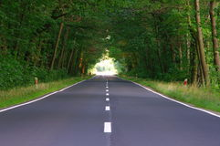 Vägen till och med skogen. Arkivfoto