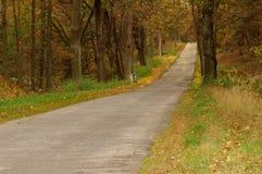 Vägen till och med skogen. Royaltyfria Foton