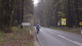 Vägen till och med skogen Europa Höst arkivfilmer