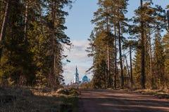 Vägen till och med skogen till templet arkivfoto