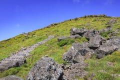 Vägen upp det hallasan berget, Jeju ö, Sydkorea Royaltyfri Fotografi