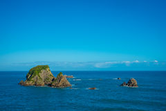 Väggö nära udde Foulwind, sikt från den uddeFoulwind gångbanan på skyddsremsakolonin, Tauranga fjärd New Zealand Arkivbilder