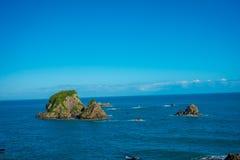 Väggö nära udde Foulwind, sikt från den uddeFoulwind gångbanan på skyddsremsakolonin, Tauranga fjärd New Zealand Royaltyfria Foton