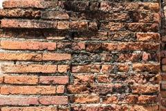 vägg Royaltyfri Foto