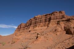 Vägg av den Kharmin Tsav kanjonen i den mongoliska Gobi öknen Arkivfoton