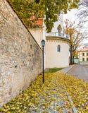 Vägg av den medeltida slotten i Cesis, Lettland, Europa Royaltyfria Bilder
