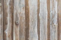 Vägg av det lantliga huset som göras från bakgrund för trä för ol teakträför träjournaler sömlös Royaltyfri Bild
