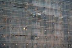 Vägg av en bostads- byggnad med upplyst skyddande raster för material till byggnadsställning och för fasad arkivbilder