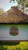 Vägg av en traditionell färgrik byggnad i den Zalipie byn i Polen fotografering för bildbyråer