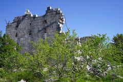 Vägg av fästningen Arkivfoto