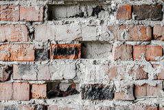Vägg av gammala tegelstenar Fotografering för Bildbyråer