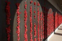 Vägg av minnet på krigminnesmärken i Canberra arkivfoto