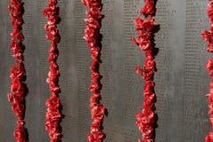 Vägg av minnet på krigminnesmärken i Canberra royaltyfri bild