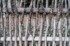 Vägg av pilris som bakgrund Lantligt gammalt staket som göras från videris och filialer royaltyfri foto