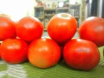 Vägg av tomater arkivbild