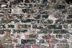 vägg för 2 tegelsten royaltyfri bild
