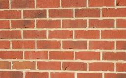 vägg för 4 tegelsten Royaltyfri Fotografi
