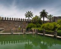 vägg för alcazarslottcordoba damm Royaltyfria Bilder