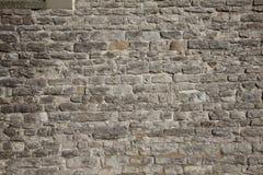vägg för bakgrundstegelstenslott Royaltyfri Foto