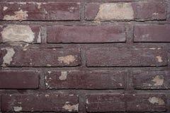 vägg för bakgrundstegelstentextur Fotografering för Bildbyråer