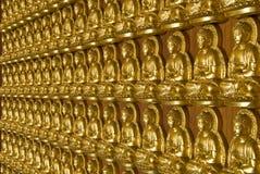 vägg för buddha guldtempel Royaltyfri Bild