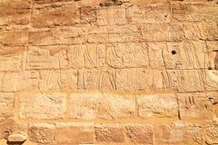 vägg för del för egypt hieroglyphskarnak Royaltyfri Foto