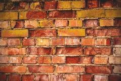Vägg för röd tegelsten med bakgrund för mossatexturgrunge med vignetted hörn royaltyfri foto