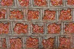Vägg för röd tegelsten för tappning med grov yttersida och mörk fläck som tas från en gammal stad i Indien Modellen och murverkte Arkivfoton