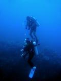 vägg för scuba för sabang för dykarephilippines rev Royaltyfria Bilder