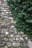 vägg för sten för bakgrundsfärggrunge Royaltyfria Bilder