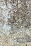 vägg för sten för detaljerat fragment för bakgrund hög Royaltyfri Foto