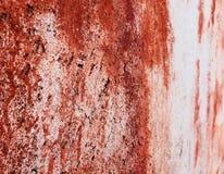 Vägg för tappning för perspektiv för Colorfull vibrerande utomhus- gropig tegelstenfärg Royaltyfria Foton