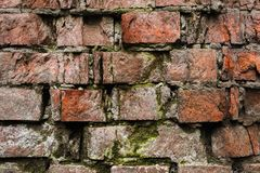 Vägg för tegelsten för Grungebakgrund som gammal ridas ut och ifrån varandra falls Cementinterlayersna mellan tegelstenarna täckt Arkivfoton