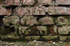 Vägg för tegelsten för Grungebakgrund som gammal ridas ut och ifrån varandra falls Cementinterlayersna mellan tegelstenarna täckt Arkivbild