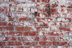vägg för tegelstengrungered arkivbild