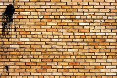 vägg för tegelstengrungetextur Royaltyfria Foton
