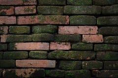 vägg för textur för bakgrundstegelsten gammal Royaltyfri Foto